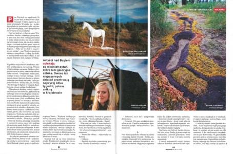 Landart newsweek 2smll